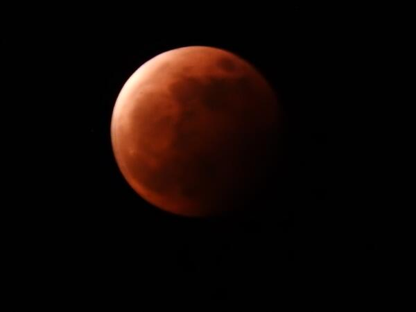 月食.jpeg